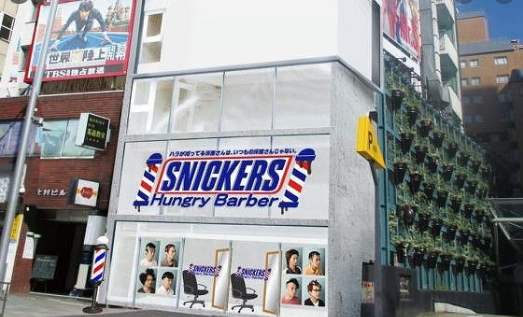 Snickers Hunger Survey